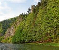 River Dunajec. Royalty Free Stock Image