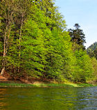 River Dunajec. Royalty Free Stock Photography