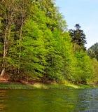 River Dunajec. Royalty Free Stock Photography