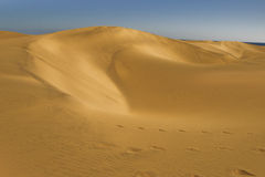 Dunas Royalty Free Stock Images