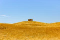 Dunas amarillas del trigo con cuatro silos Imágenes de archivo libres de regalías