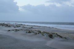 Dunas com grama na costa do Mar do Norte em Zeeland nos Países Baixos fotografia de stock