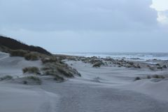 Dunas com grama na costa do Mar do Norte em Zeeland nos Países Baixos fotografia de stock royalty free