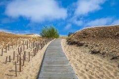 Dunas com a passagem de madeira sobre a areia perto do mar Báltico Embarque a maneira sobre a areia de dunas da praia em Lituânia imagem de stock