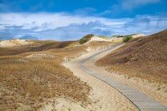 Dunas com a passagem de madeira sobre a areia perto do mar Báltico Embarque a maneira sobre a areia de dunas da praia em Lituânia fotografia de stock