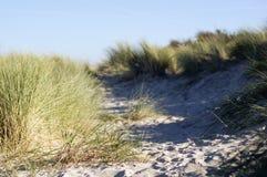 Dunas con la hierba y el cielo mucha arena Fotos de archivo libres de regalías