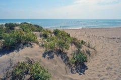 Dunas costeras en la boca de Llobregat Fotos de archivo libres de regalías