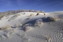 Dunas da bacia de sal em Guadalupe Mountains National Park fotos de stock royalty free
