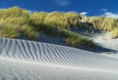 Dunas da grama e de areia imagem de stock royalty free