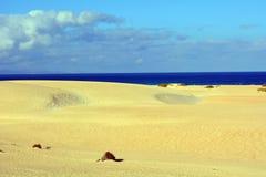 Dunas da paisagem de Corralejo, Fuerteventura, Ilhas Canárias, Espanha Fotos de Stock Royalty Free