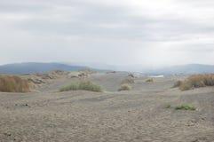 Dunas da praia Imagem de Stock Royalty Free