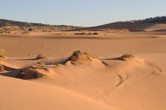 Dunas de areia Imagem de Stock Royalty Free