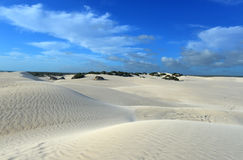 Dunas de areia brancas da reserva natural de Nilgen Imagem de Stock Royalty Free