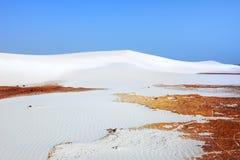 Dunas de areia brancas, Socotra Foto de Stock Royalty Free