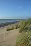 Dunas de areia com grama das dunas no Mar do Norte Foto de Stock