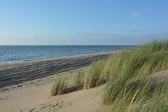 Dunas de areia com grama das dunas no Mar do Norte Fotografia de Stock Royalty Free