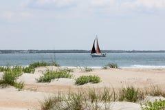 Dunas de areia com gramas na praia Foto de Stock Royalty Free