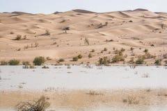 Dunas de areia com plantas e lago próximo a Chupanan em Irã foto de stock