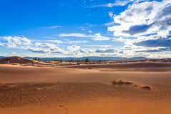 Dunas de areia cor-de-rosa corais Fotografia de Stock