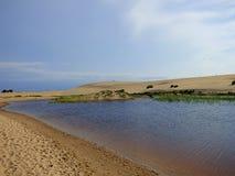 Dunas de areia da cabeça Nags imagens de stock