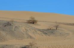 Dunas de areia de Algodones imagens de stock
