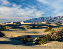 Dunas de areia de Death Valley Foto de Stock Royalty Free