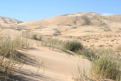Dunas de areia de Kelso, deserto de Mojave, Califórnia imagem de stock