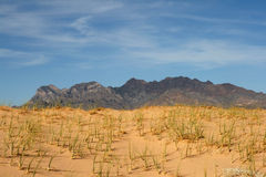 Dunas de areia de Kelso, deserto de Mojave, Califórnia foto de stock
