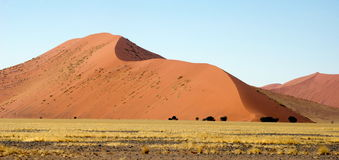 Dunas de areia de Namíbia Fotografia de Stock