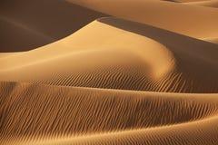 Dunas de areia do deserto Fotografia de Stock Royalty Free