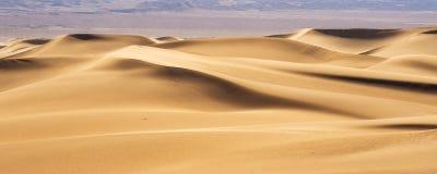 Dunas de areia do deserto Imagem de Stock Royalty Free