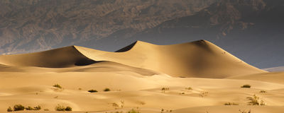 Dunas de areia do deserto Fotos de Stock