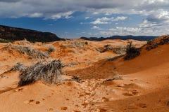 Dunas de areia do rosa do ` s de Utá com pegadas; montanhas na distância Imagem de Stock
