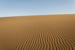 Dunas de areia douradas - marcas de ondinha Imagens de Stock Royalty Free