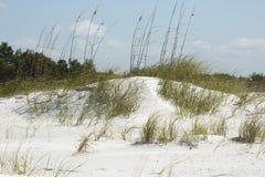 Dunas de areia e gramas da praia em Forte De Soto, Florida foto de stock