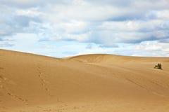 Dunas de areia em Fuerteventura Fotos de Stock Royalty Free
