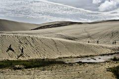 Dunas de areia gigantes de Te Paki Imagem de Stock Royalty Free