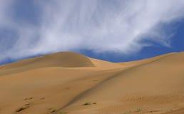 Dunas de areia imperiais Imagens de Stock