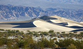 Dunas de areia lisas do Mesquite no Vale da Morte imagens de stock