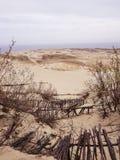 Dunas de areia de Lithuania Klaipeda Imagem de Stock