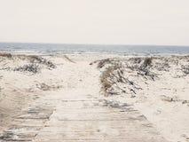 Dunas de areia de Lithuania Klaipeda Fotos de Stock Royalty Free
