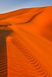 Dunas de areia - mar da areia de Awbari - Sahara, Líbia Foto de Stock