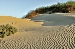 Dunas de areia modeladas no Vale da Morte, Califórnia Fotografia de Stock Royalty Free