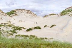 Dunas de areia muito impressionantes, céu azul, grama alta e pares explorando a área Foto de Stock