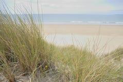 Dunas de areia na praia imagem de stock royalty free