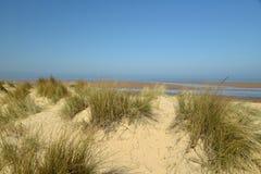 Dunas de areia na praia de Holkham em Norfolk Fotografia de Stock