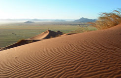 Dunas de areia no deserto de Kalahari Fotografia de Stock