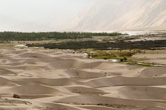 Dunas de areia no deserto frio do vale de Nubra do ladakh Imagens de Stock Royalty Free