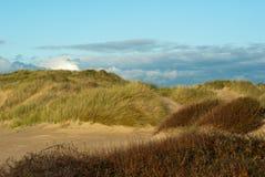 Dunas de areia no fim da tarde Imagem de Stock