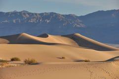 Dunas de areia no parque nacional de Vale da Morte, Califórnia, EUA Imagem de Stock Royalty Free